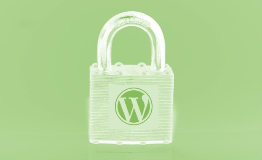 SSL optimization for WordPress.