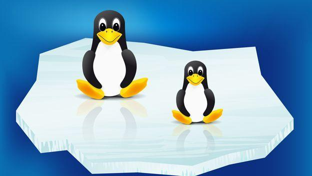 In this post you will find a very well done comparison of the best lightest Linux distributions to install on your computer. ENTERS!