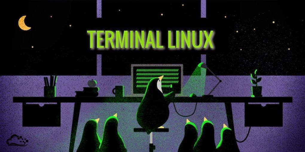 En este post encontrarás a la plataforma Webminal, web útil en la que puedes acceder para aprender todo sobre la terminal de Linux. ¡ENTRA!