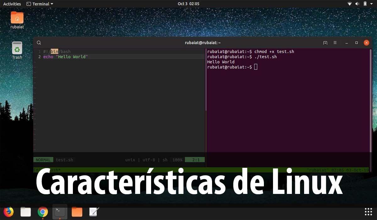 Características del sistema operativo